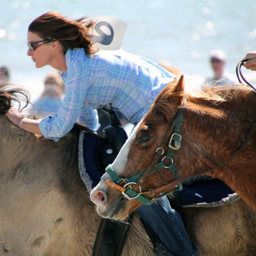 horse-race-173388_960_720