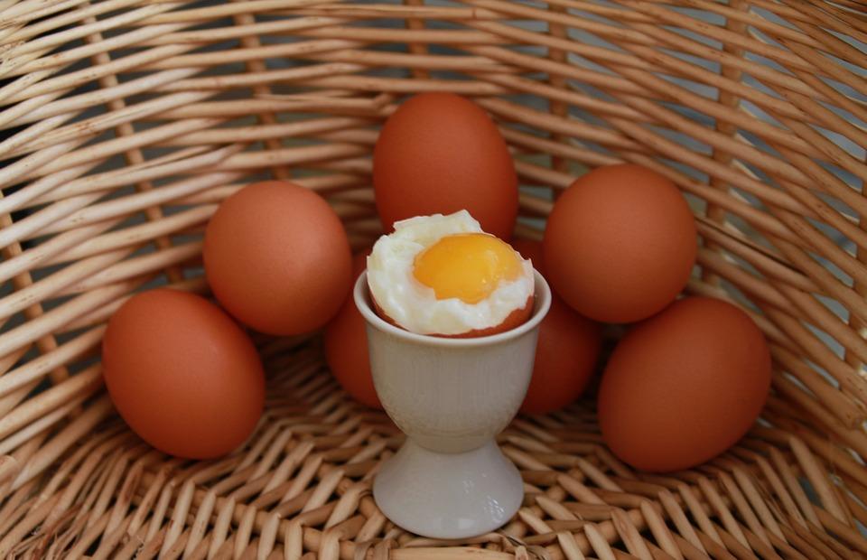 правильное белковое питание для похудения