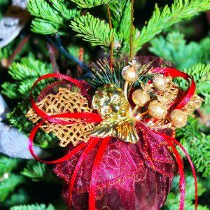 christmas-tree-1812193_1280