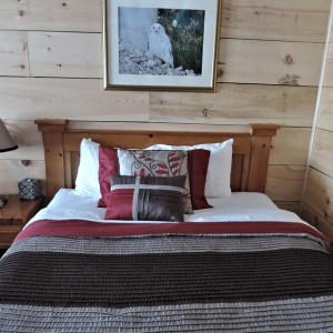 wood-cabin-1011682_960_720