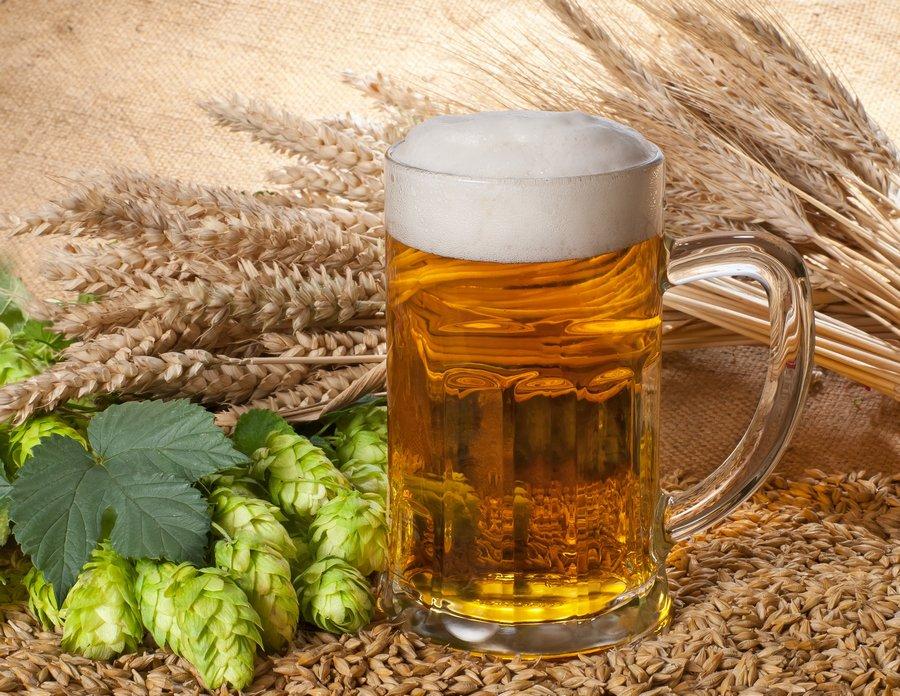 svetloe-pivo-6